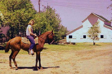 Annie Ludemann on Quarter Horse