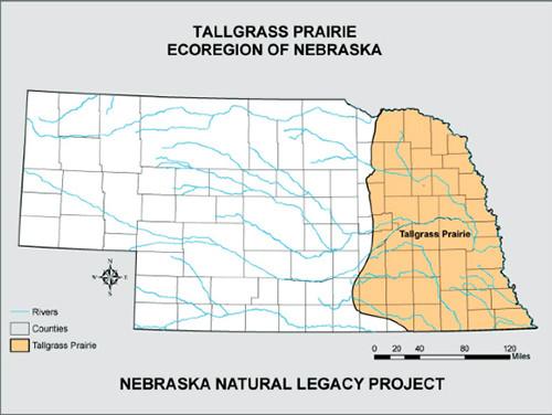 Map 1  Nebraska Tallgrass Prairie