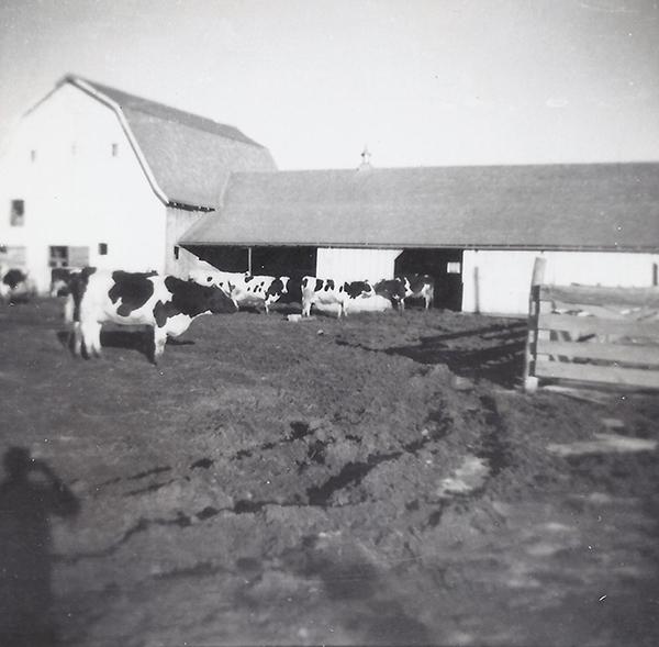 Kremer Dairy Farm